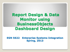 BusinessObjects Dashboard Design EGN EXCEL FONKS 13400132